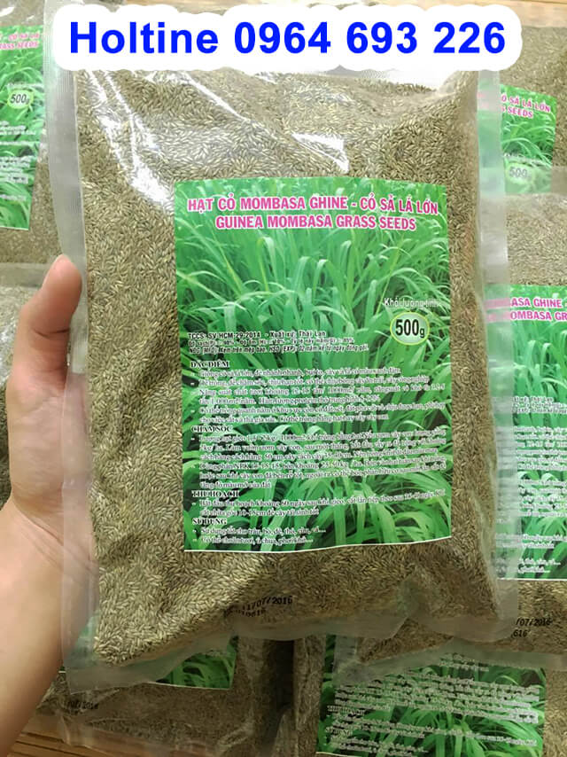 hạt giống cỏ Ghine