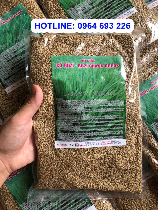 hạt giống cỏ ruzi